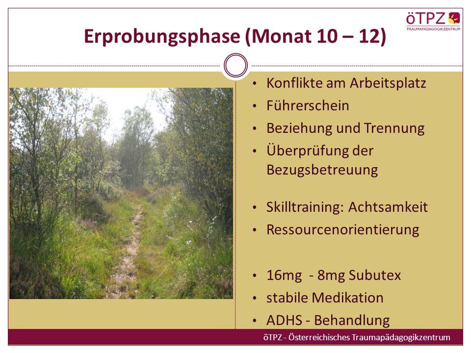 Erprobungsphase (Monat 10 – 12)