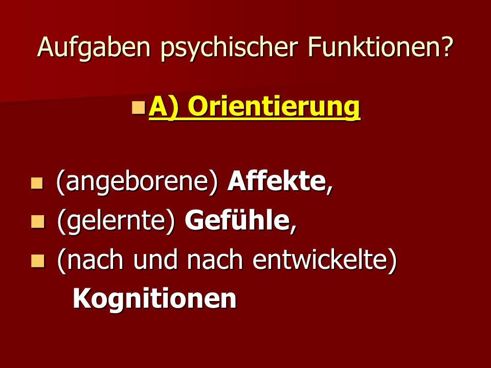 Aufgaben psychischer Funktionen