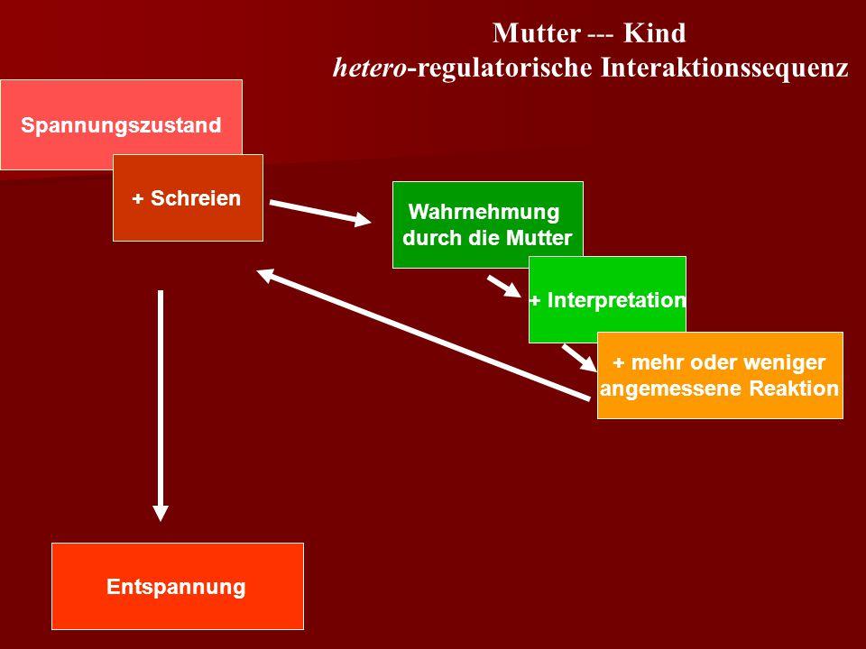 hetero-regulatorische Interaktionssequenz