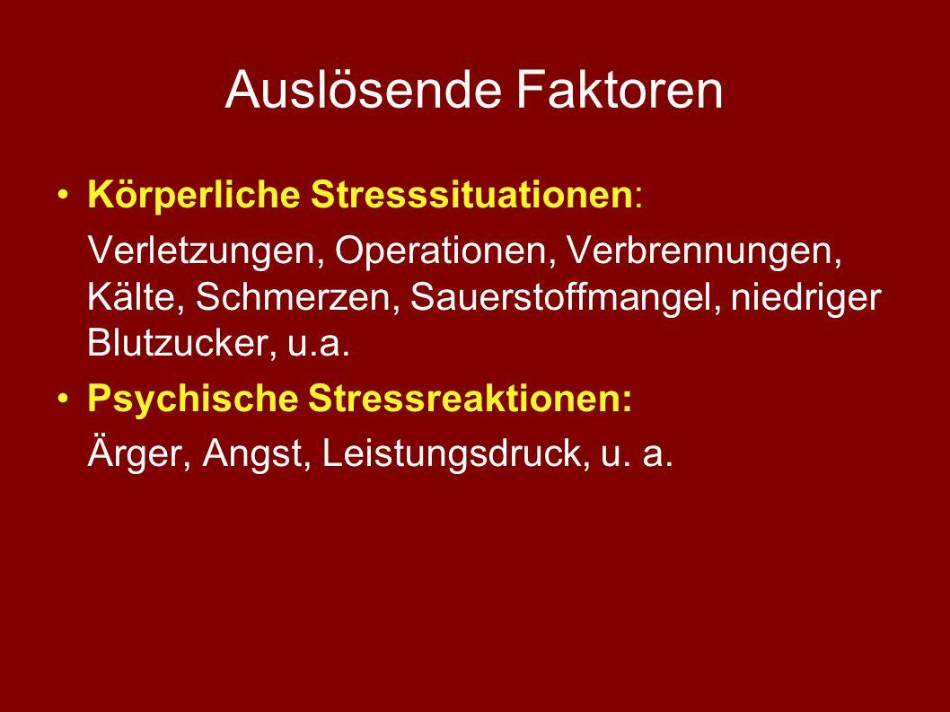 Auslösende Faktoren Körperliche Stresssituationen: