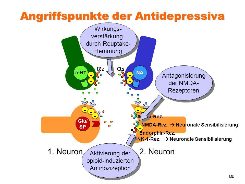 Angriffspunkte der Antidepressiva