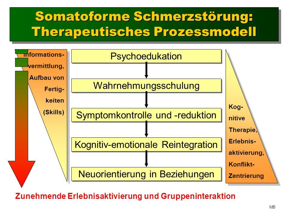 Somatoforme Schmerzstörung: Therapeutisches Prozessmodell