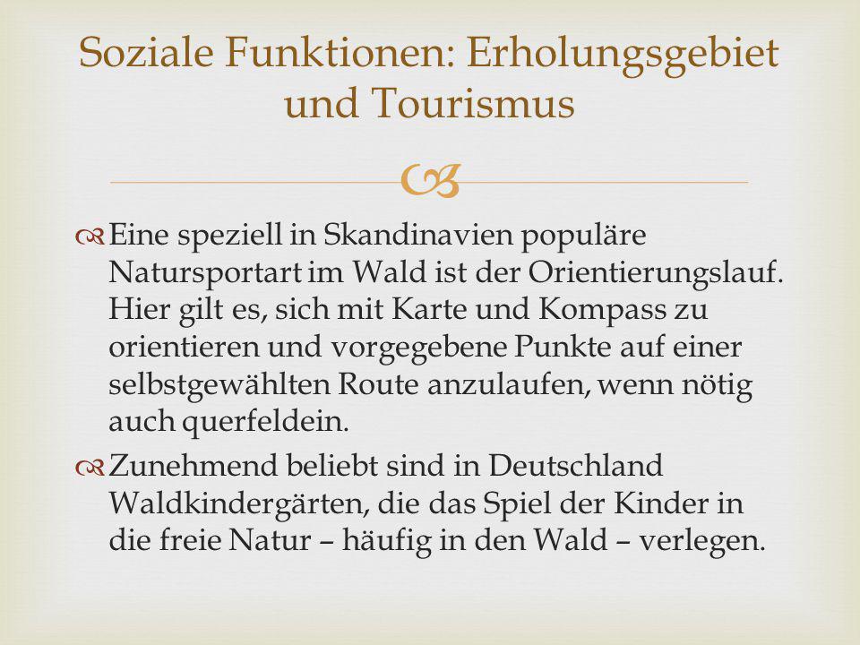 Soziale Funktionen: Erholungsgebiet und Tourismus