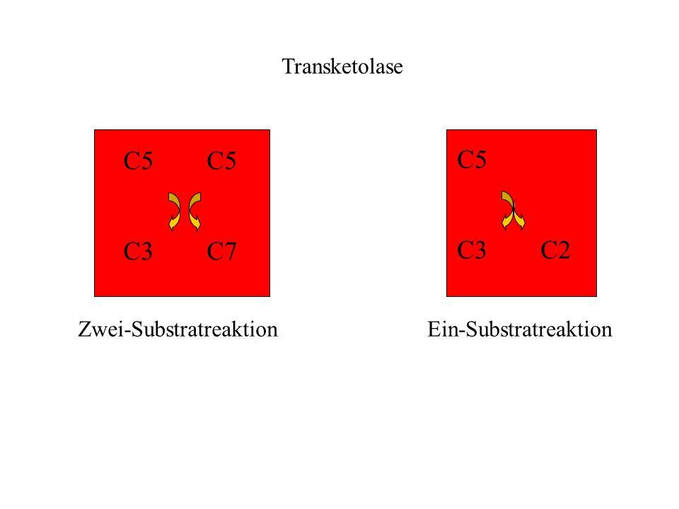C5 C5 C5 C3 C7 C3 C2 Transketolase Zwei-Substratreaktion