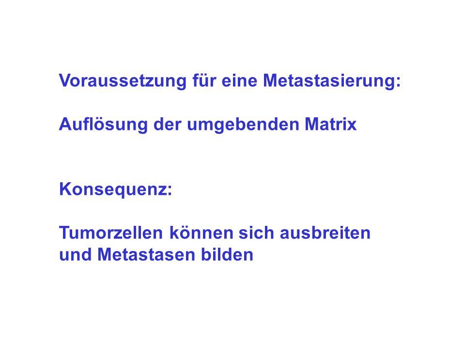 Voraussetzung für eine Metastasierung: