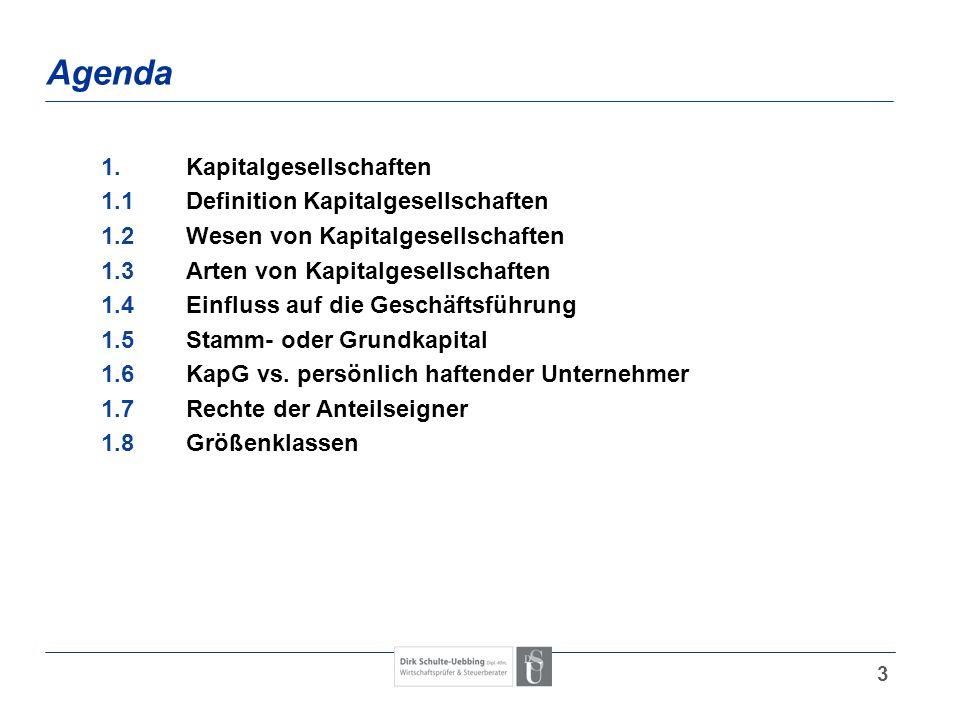 Agenda 1. Kapitalgesellschaften 1.1 Definition Kapitalgesellschaften