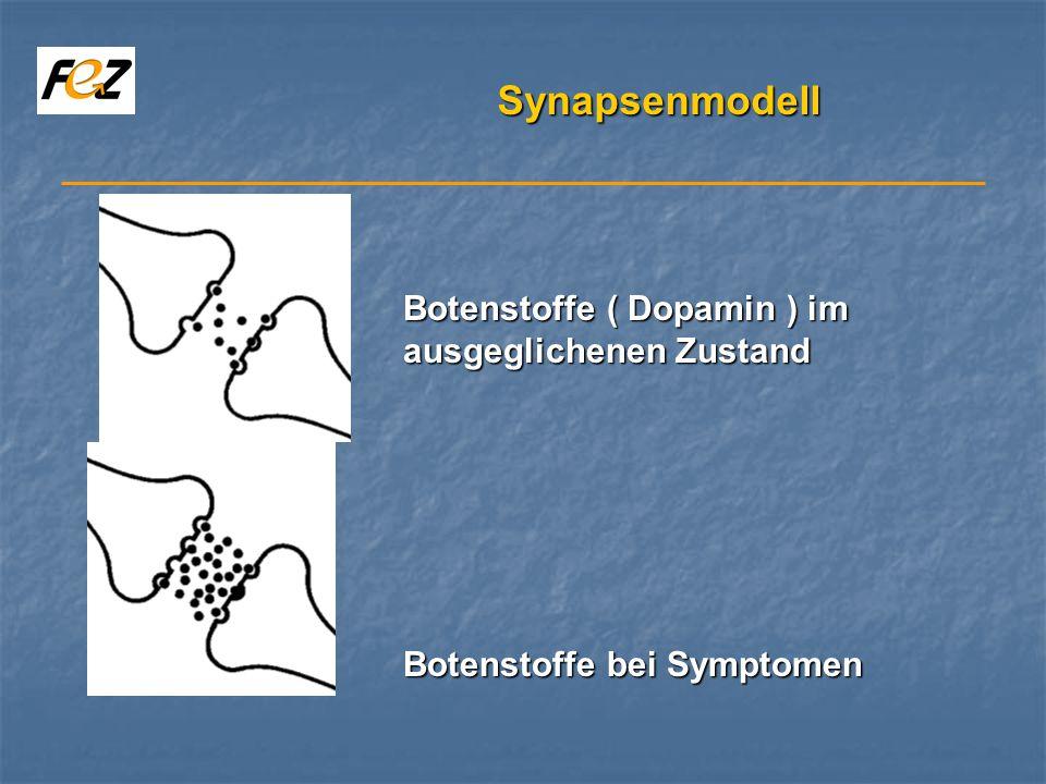 Synapsenmodell Botenstoffe ( Dopamin ) im ausgeglichenen Zustand