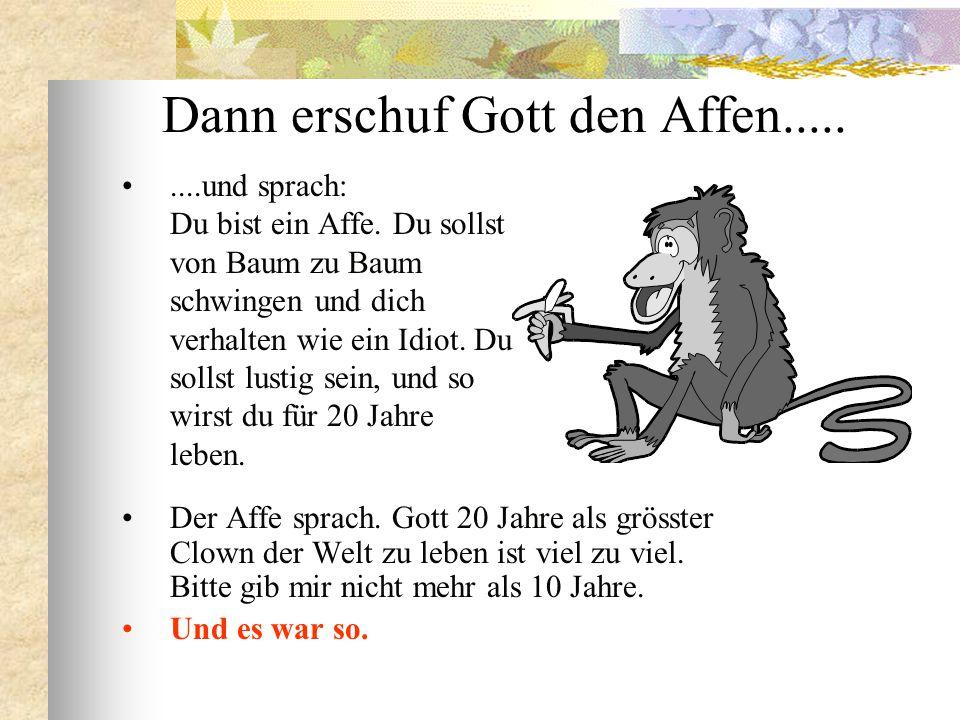 Dann erschuf Gott den Affen.....