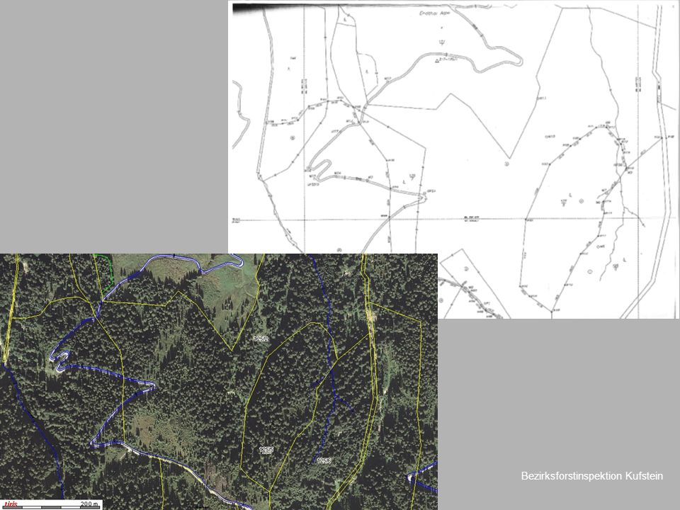 Normale bewilligungsfähige Waldteilung, die Trennflächen bzw