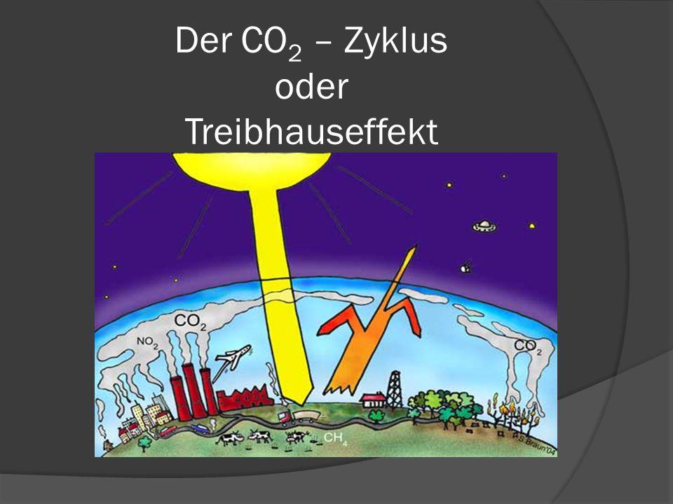 Der CO2 – Zyklus oder Treibhauseffekt
