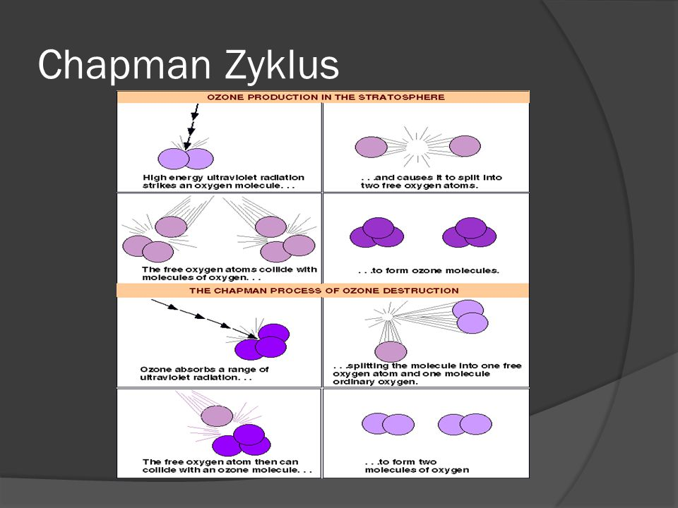 Chapman Zyklus