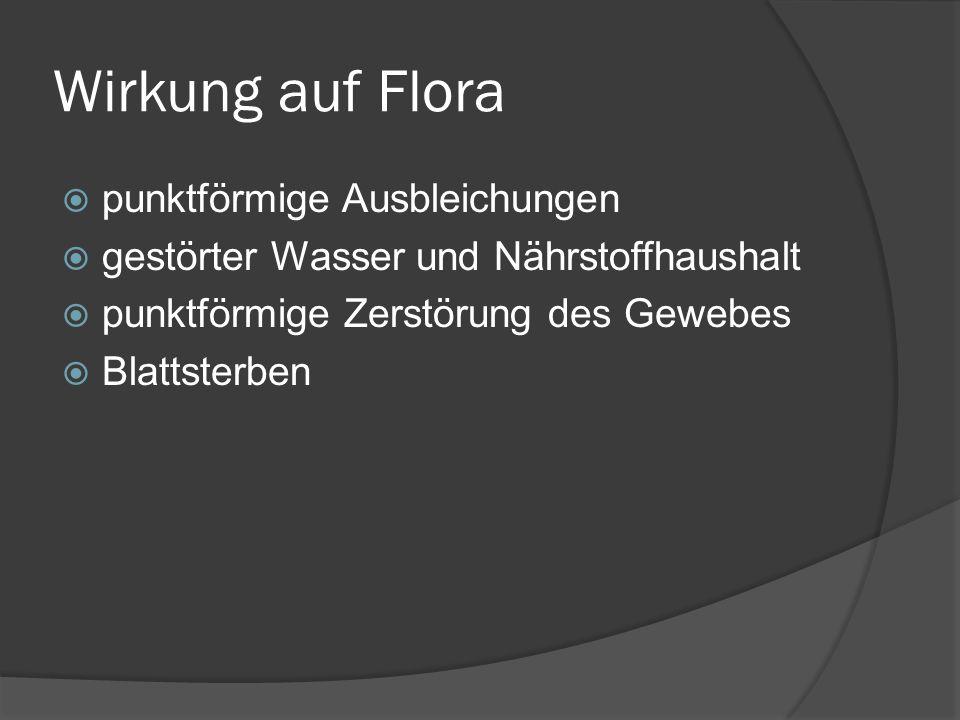 Wirkung auf Flora punktförmige Ausbleichungen