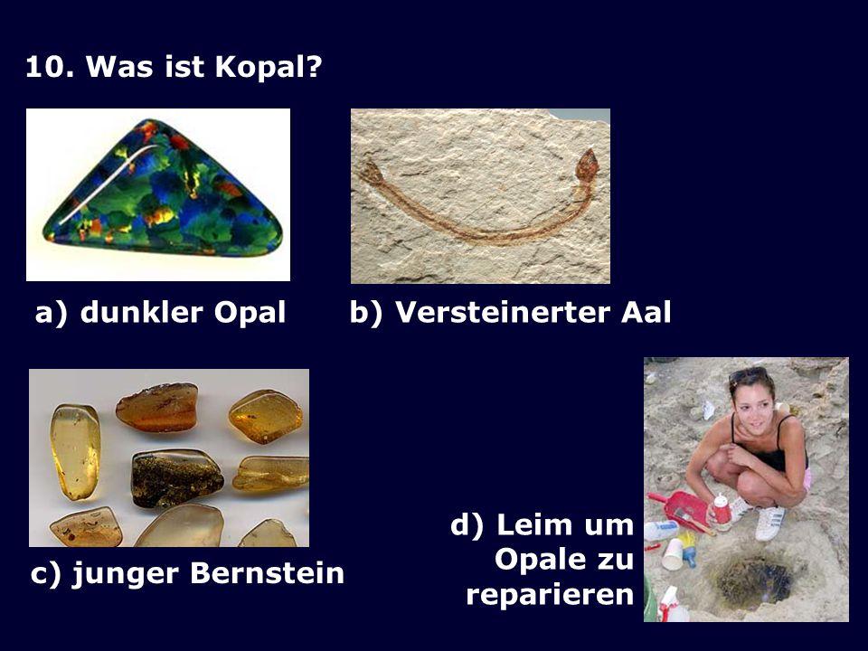 10. Was ist Kopal. a) dunkler Opal. b) Versteinerter Aal.