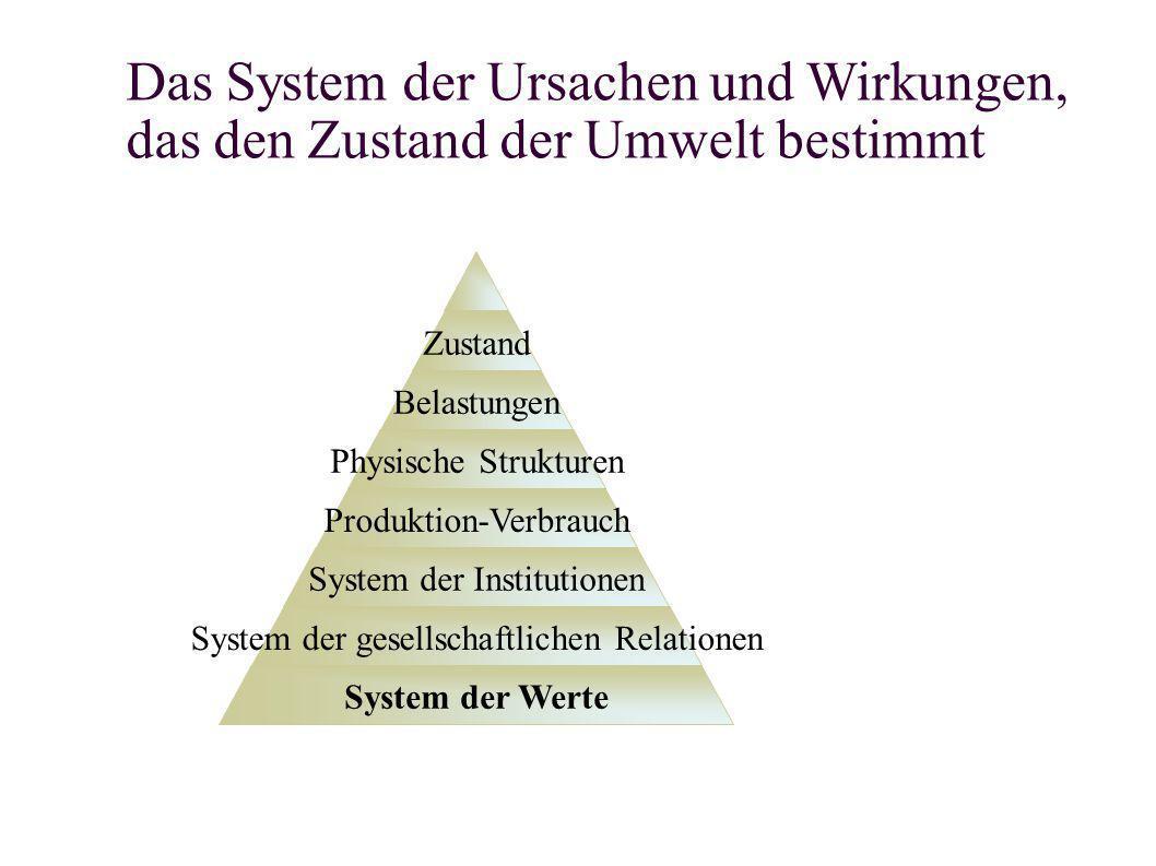 Das System der Ursachen und Wirkungen, das den Zustand der Umwelt bestimmt