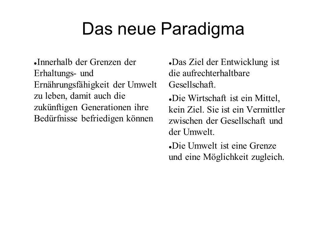 Das neue Paradigma