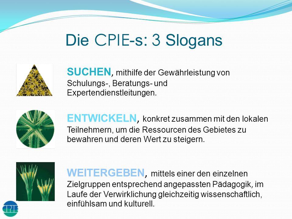 Die CPIE-s: 3 Slogans SUCHEN, mithilfe der Gewährleistung von Schulungs-, Beratungs- und Expertendienstleitungen.