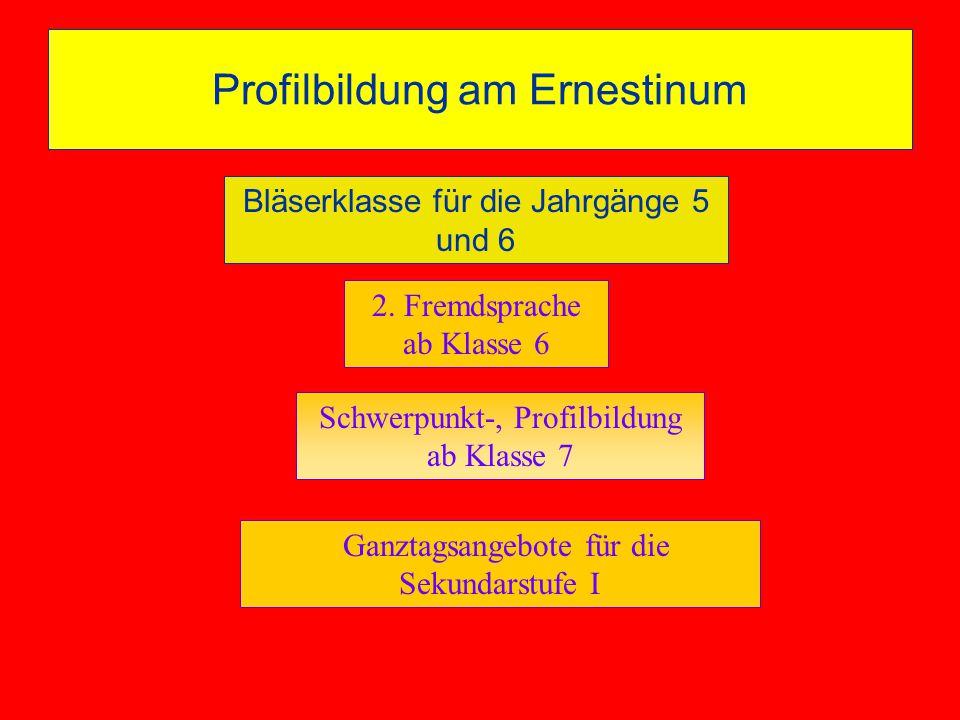 Profilbildung am Ernestinum