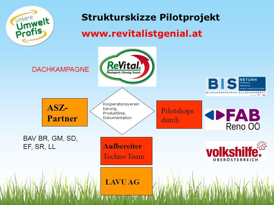 Strukturskizze Pilotprojekt www.revitalistgenial.at