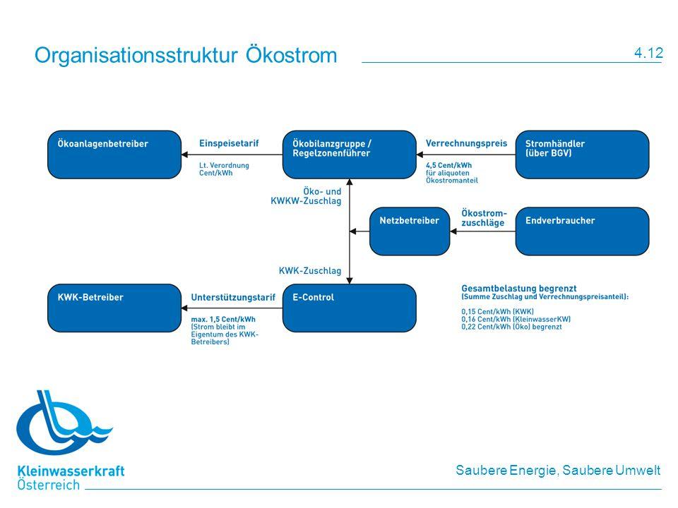 Organisationsstruktur Ökostrom
