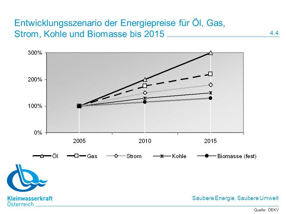 Entwicklungsszenario der Energiepreise für Öl, Gas, Strom, Kohle und Biomasse bis 2015
