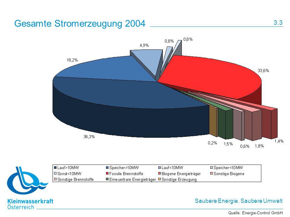 Gesamte Stromerzeugung 2004