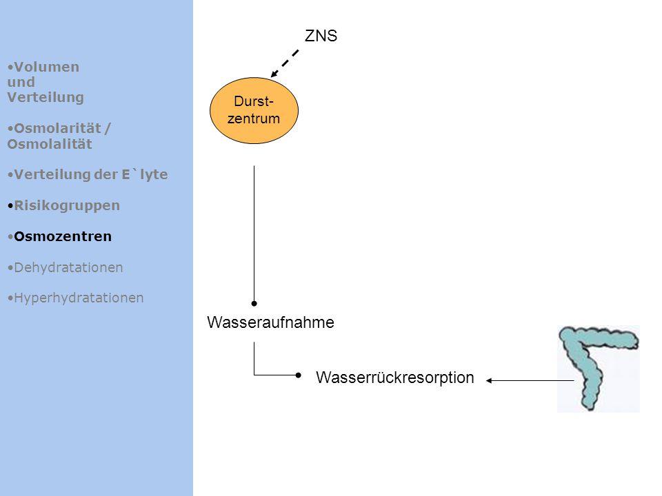Wasserrückresorption