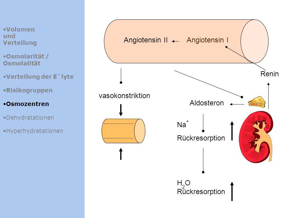 Angiotensin II Angiotensin I Renin vasokonstriktion Aldosteron Na+