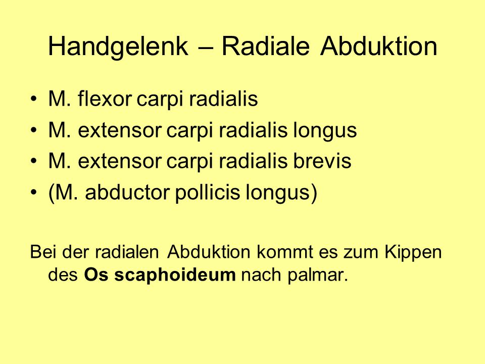 Handgelenk – Radiale Abduktion