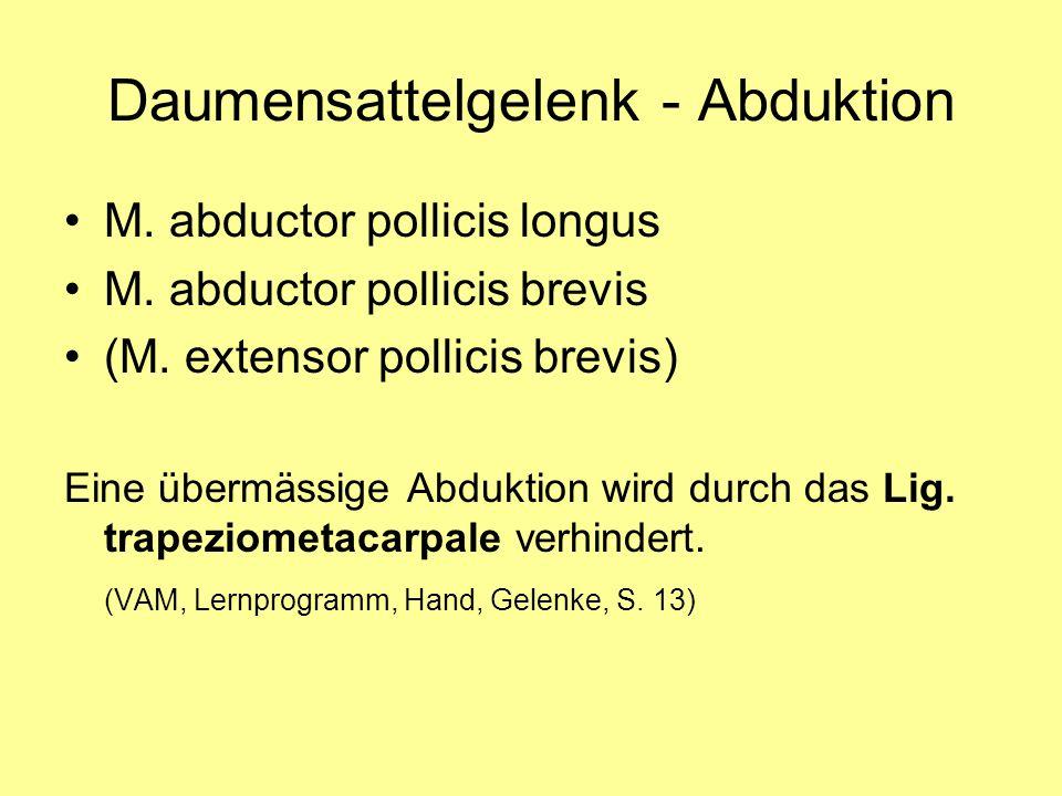 Daumensattelgelenk - Abduktion