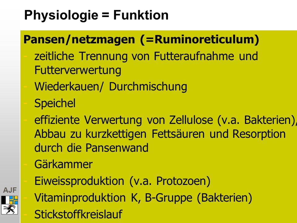 Physiologie = Funktion