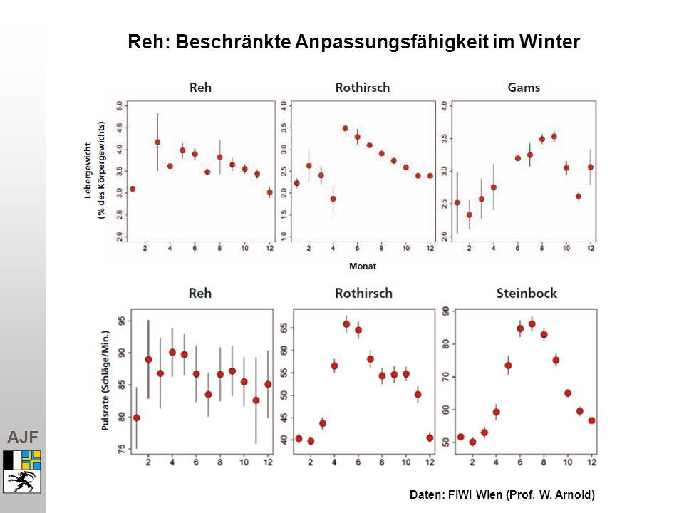 Reh: Beschränkte Anpassungsfähigkeit im Winter