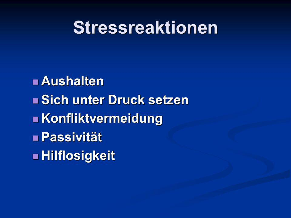 Stressreaktionen Aushalten Sich unter Druck setzen Konfliktvermeidung
