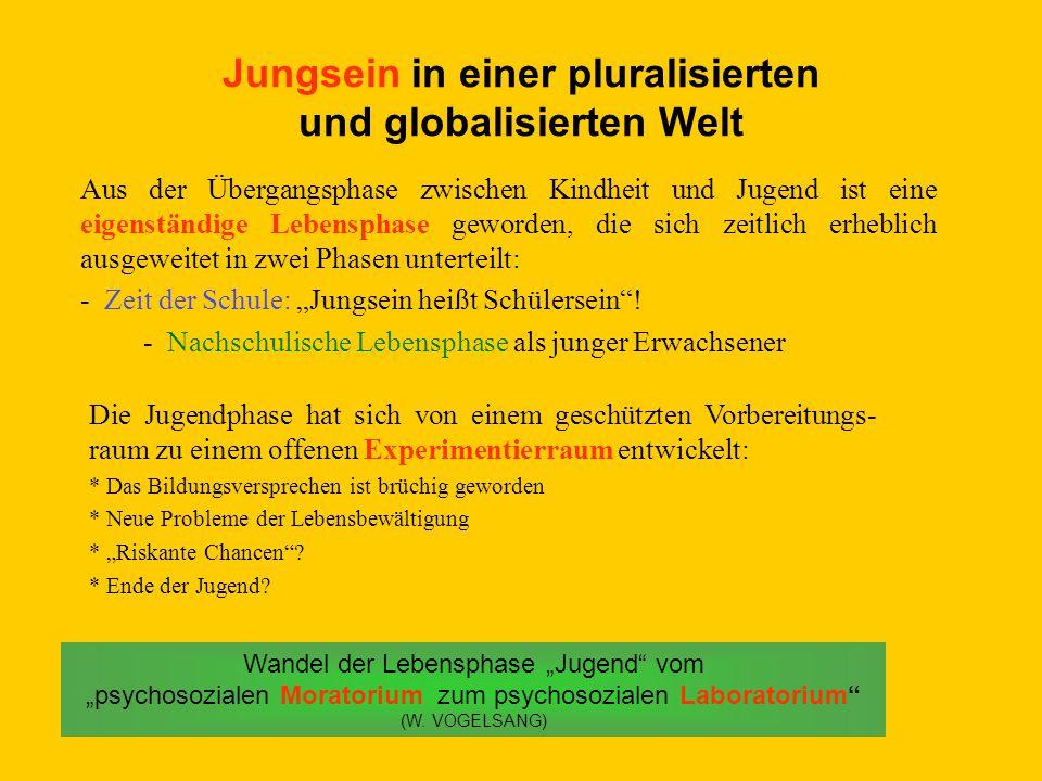 Jungsein in einer pluralisierten und globalisierten Welt