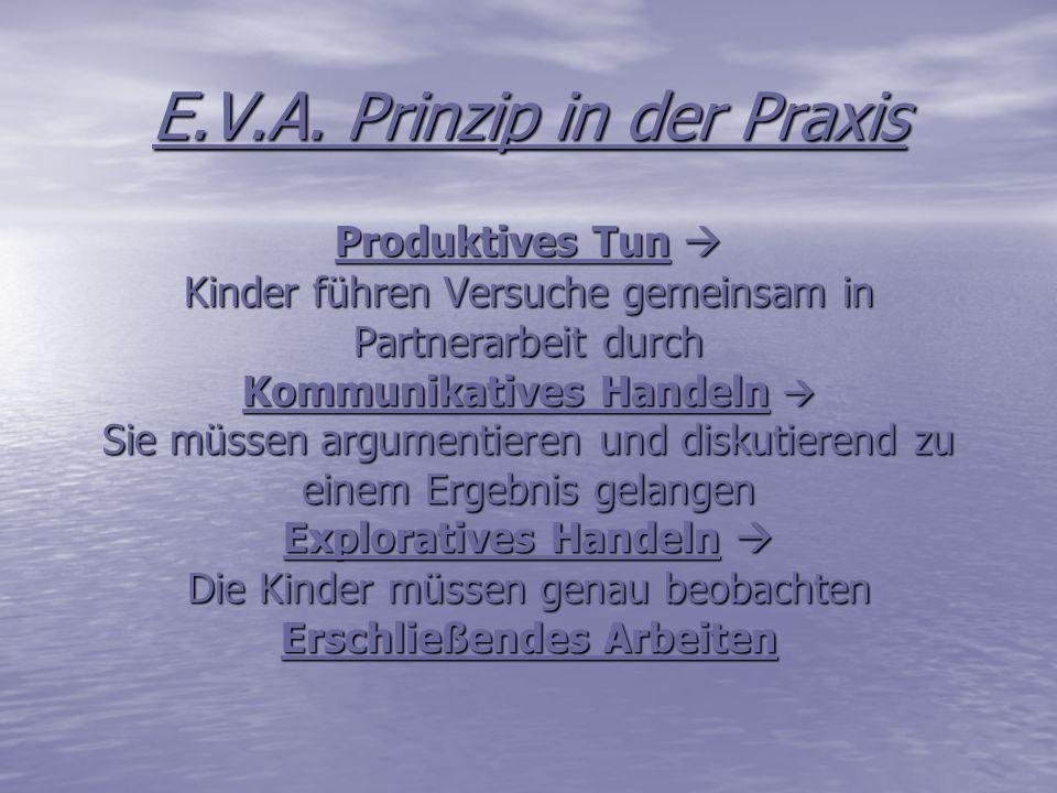 E.V.A. Prinzip in der Praxis