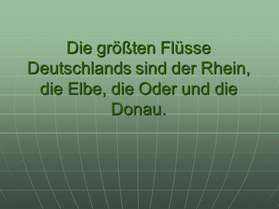 Die größten Flüsse Deutschlands sind der Rhein, die Elbe, die Oder und die Donau.
