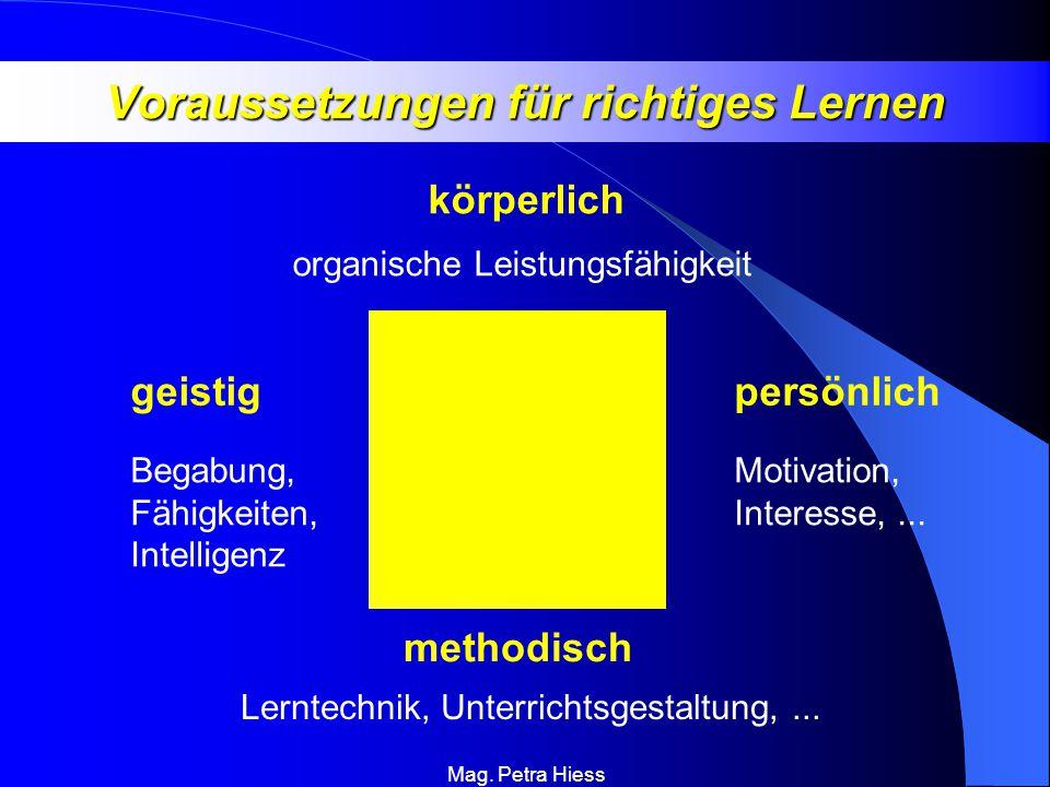 Voraussetzungen für richtiges Lernen
