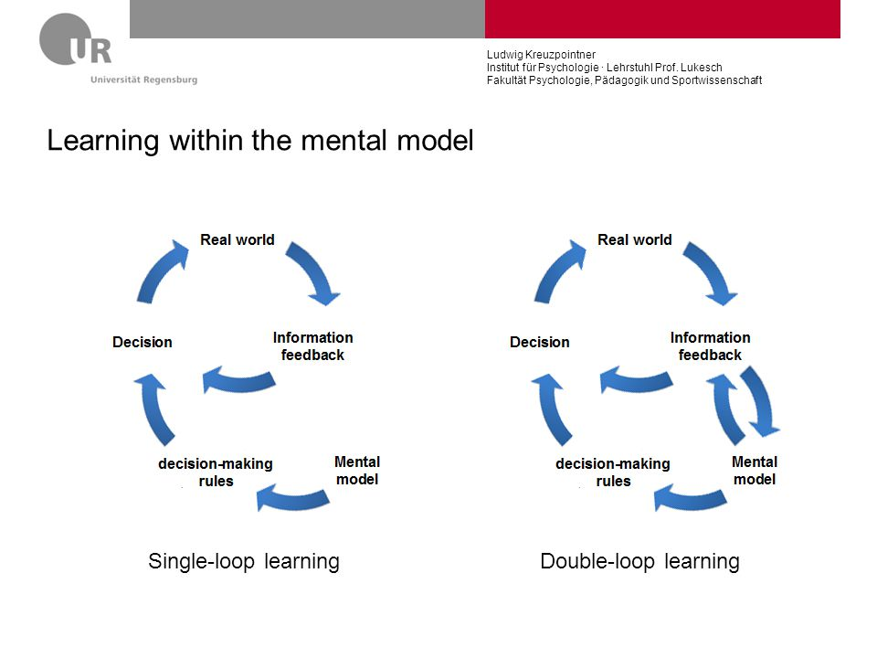 Learning within the mental model