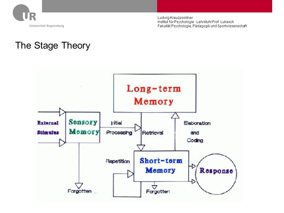 The Stage Theory