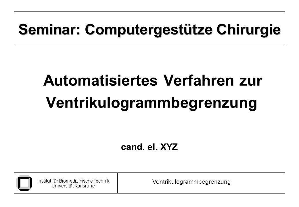 Seminar: Computergestütze Chirurgie