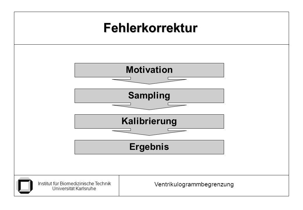 Fehlerkorrektur Motivation Sampling Kalibrierung Ergebnis
