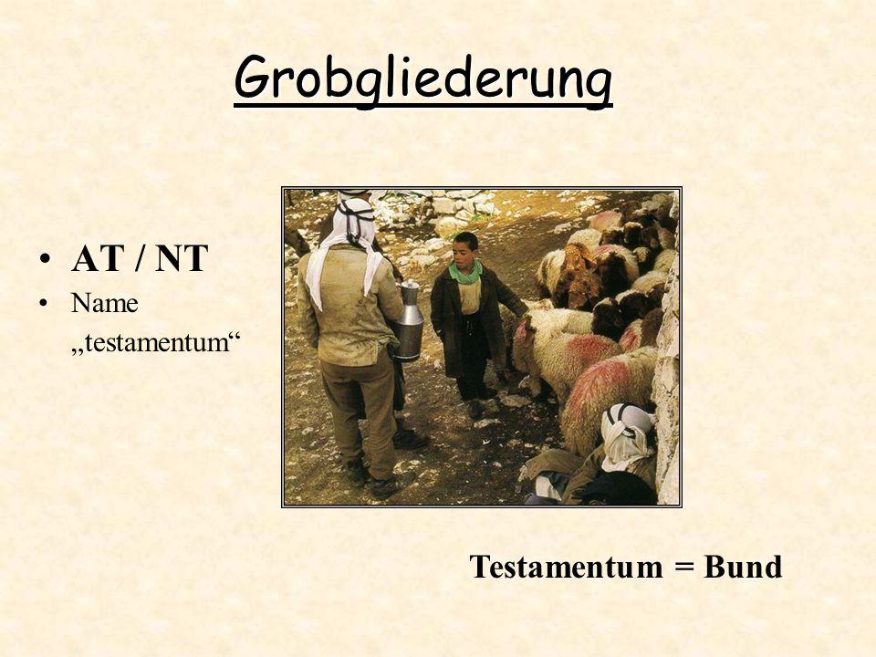 """Grobgliederung AT / NT Name """"testamentum Testamentum = Bund"""