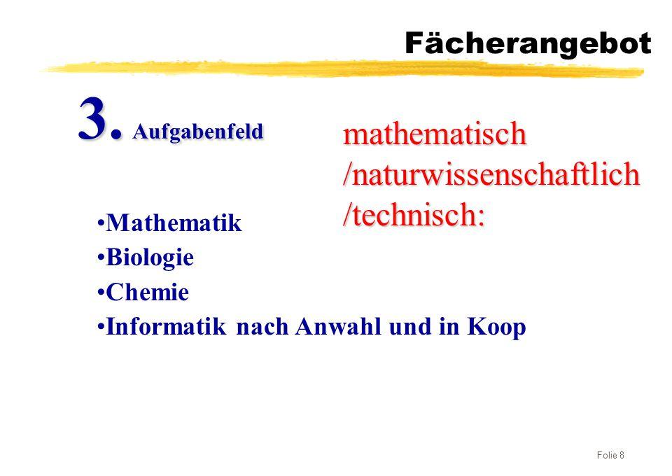 3. Aufgabenfeld mathematisch /naturwissenschaftlich /technisch: