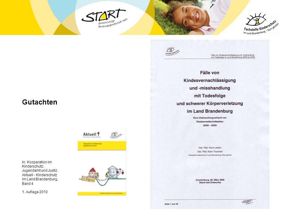 Gutachten In: Kooperation im Kinderschutz: Jugendamt und Justiz. Aktuell - Kinderschutz im Land Brandenburg, Band 4.