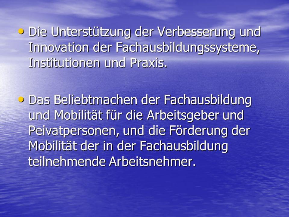Die Unterstützung der Verbesserung und Innovation der Fachausbildungssysteme, Institutionen und Praxis.