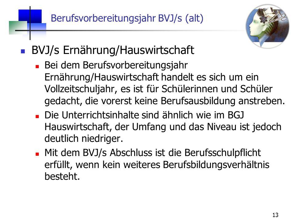 Berufsvorbereitungsjahr BVJ/s (alt)
