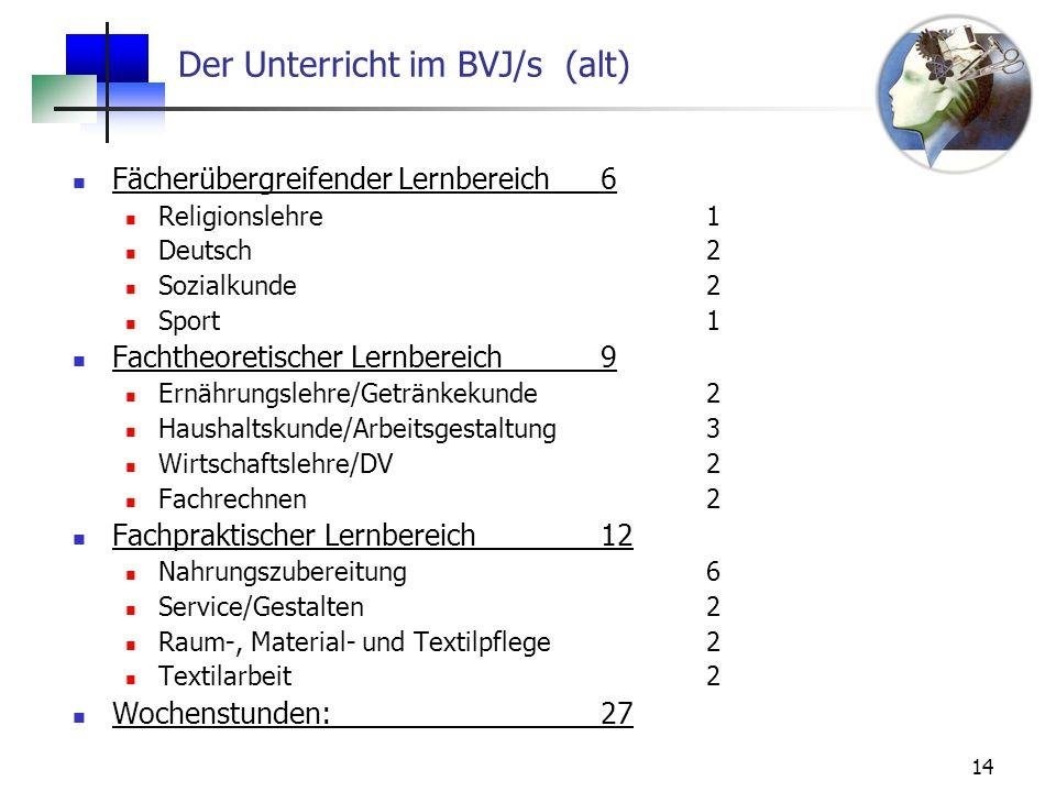Der Unterricht im BVJ/s (alt)