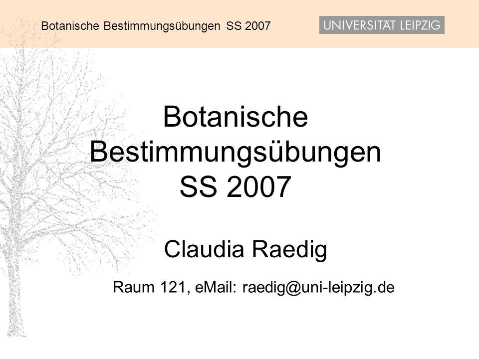 Raum 121, eMail: raedig@uni-leipzig.de