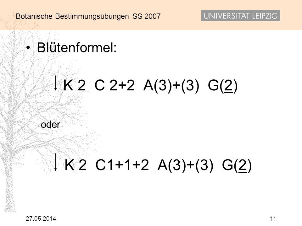 K 2 C1+1+2 A(3)+(3) G(2) Blütenformel: K 2 C 2+2 A(3)+(3) G(2) oder