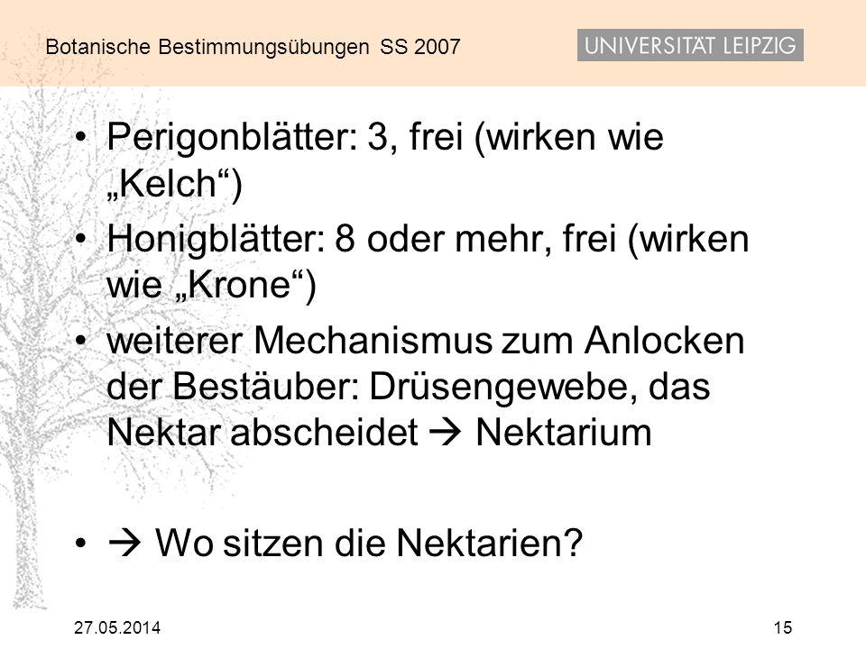 """Perigonblätter: 3, frei (wirken wie """"Kelch )"""