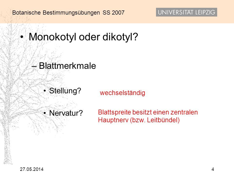 Monokotyl oder dikotyl